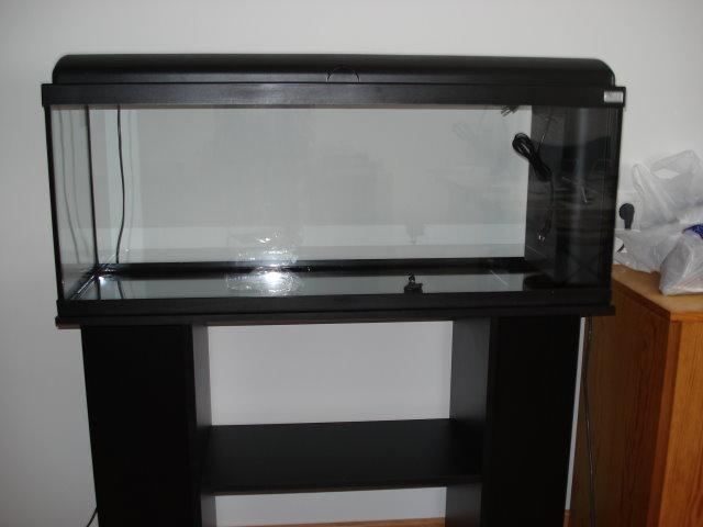 acuario-vacio