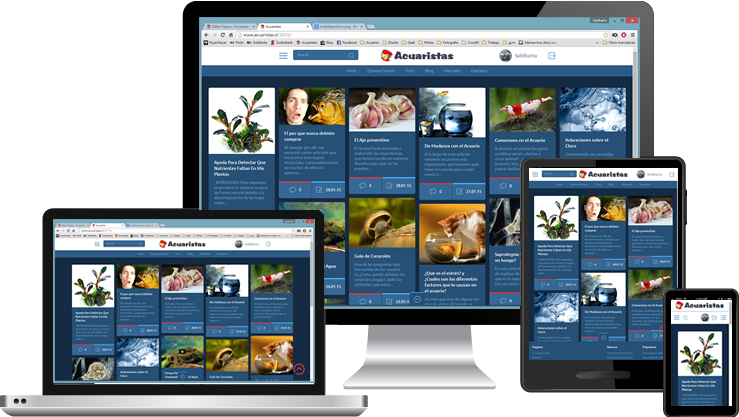 multi_device-Responsive-Intranet