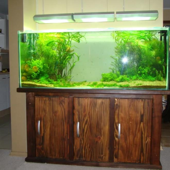 Mueble para acuario de discos acuaristas for Mueble acuario
