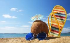 Vacaciones ¿Que hacer con el Acuario?