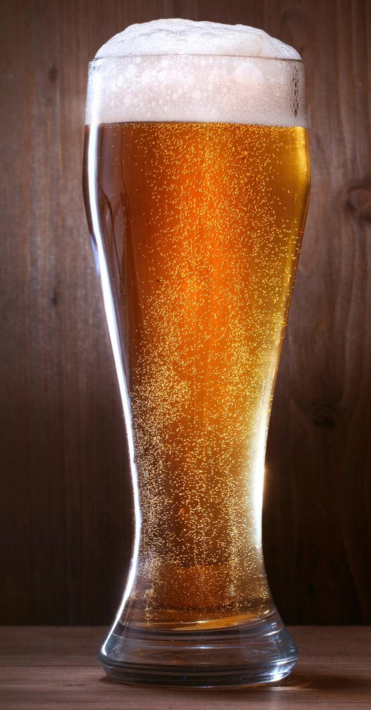 La Cerveza al rescate de nuestras Plantas en Invierno